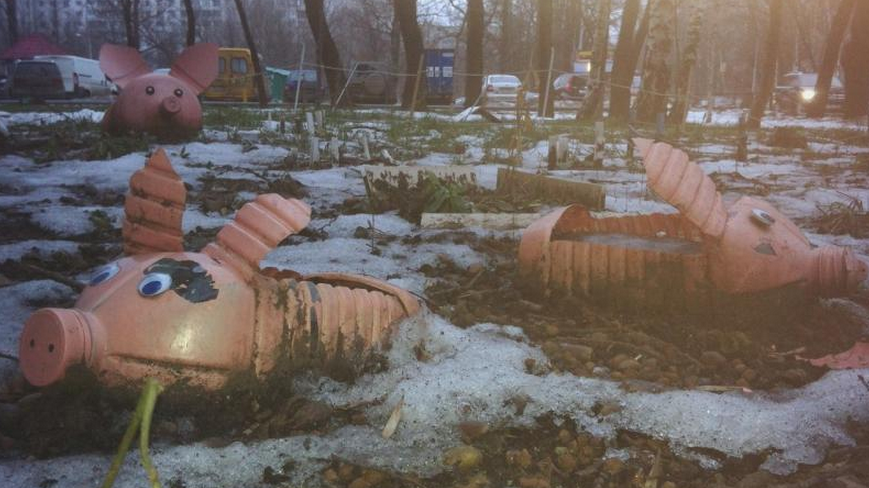 Awesome Photos From Russia With Love - Flowerbeds