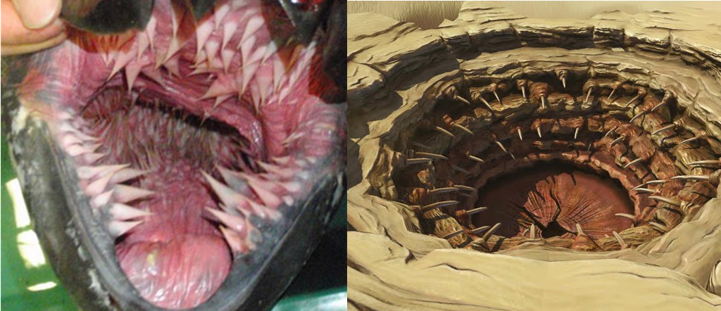 Leatherback vs Sarlacc Pit