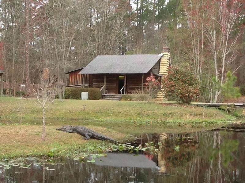 Okefenokee Swamp - Visitors Centre
