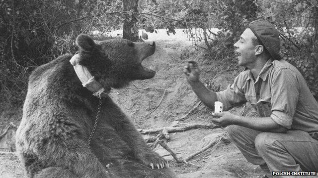 Wojtek Bear - Being Fed