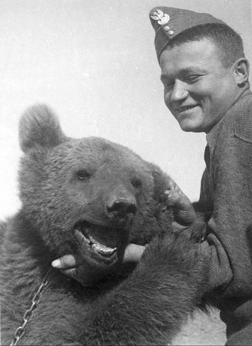 Wojtek Bear - Playing