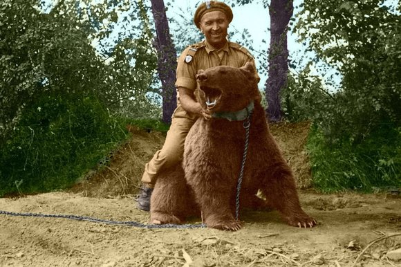 Wojtek Bear - Riding a bear