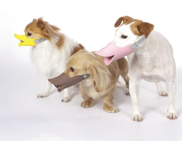 Quack Muzzle - Japan Trend