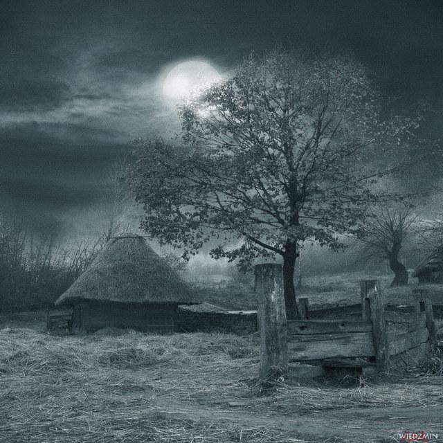 Ukraine Village Alexander Mihailenko 9
