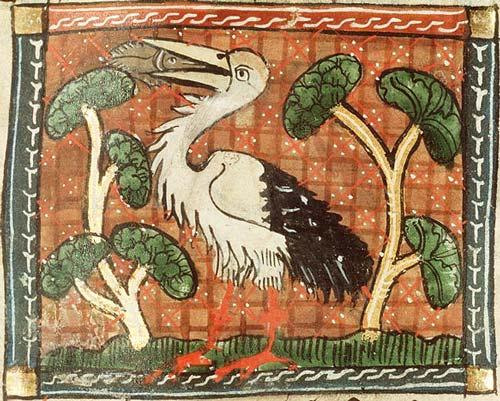 Physiologus - Stork