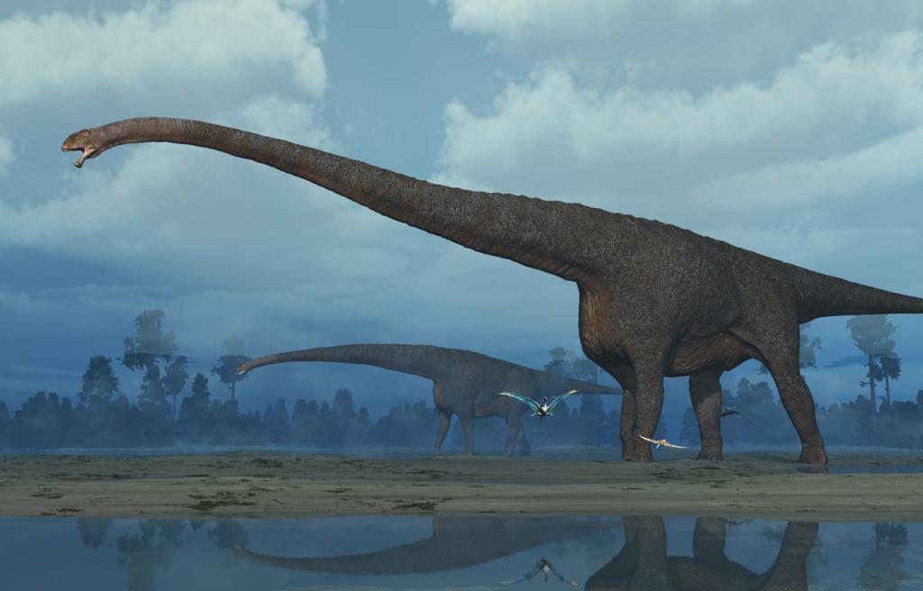 Qijianglong - china - long neck dinosaur