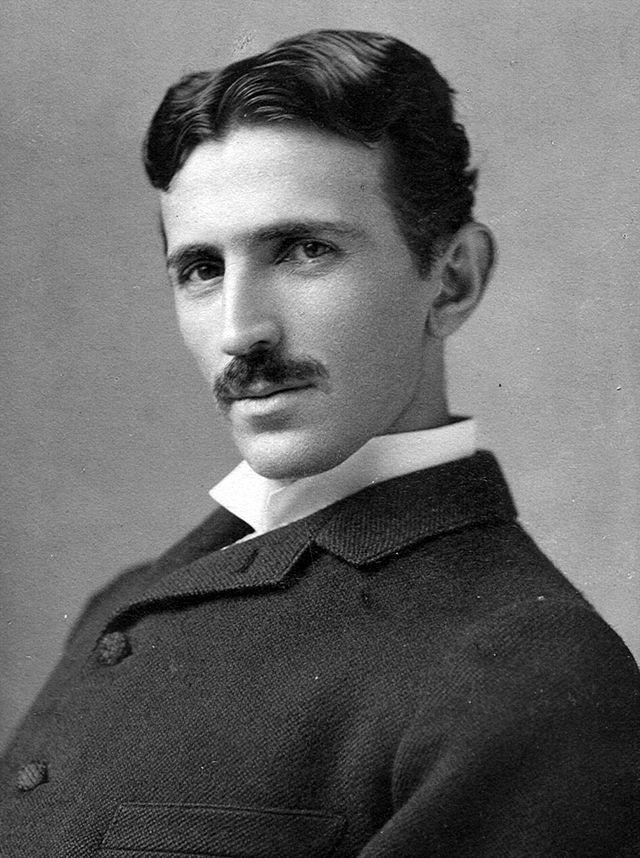 Nikola Tesla Pigeon