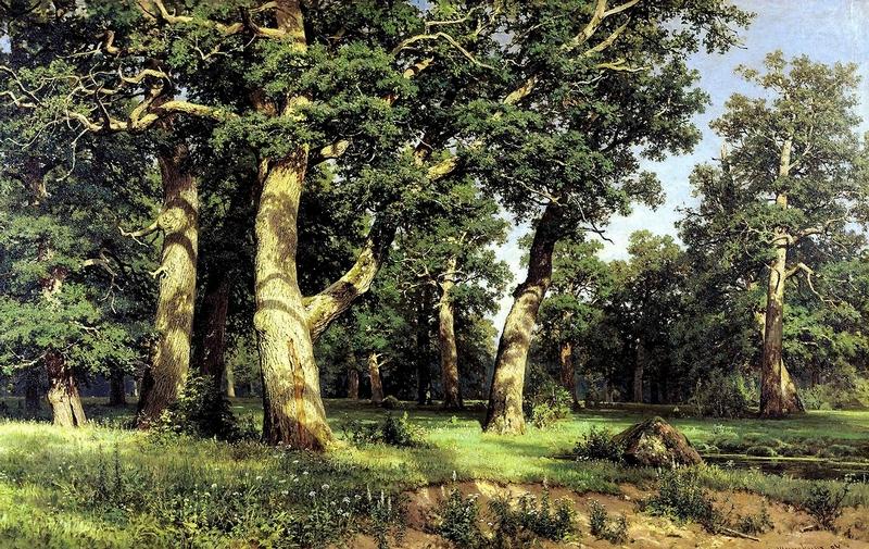 Ivan Shishkin - Forest Painting 1