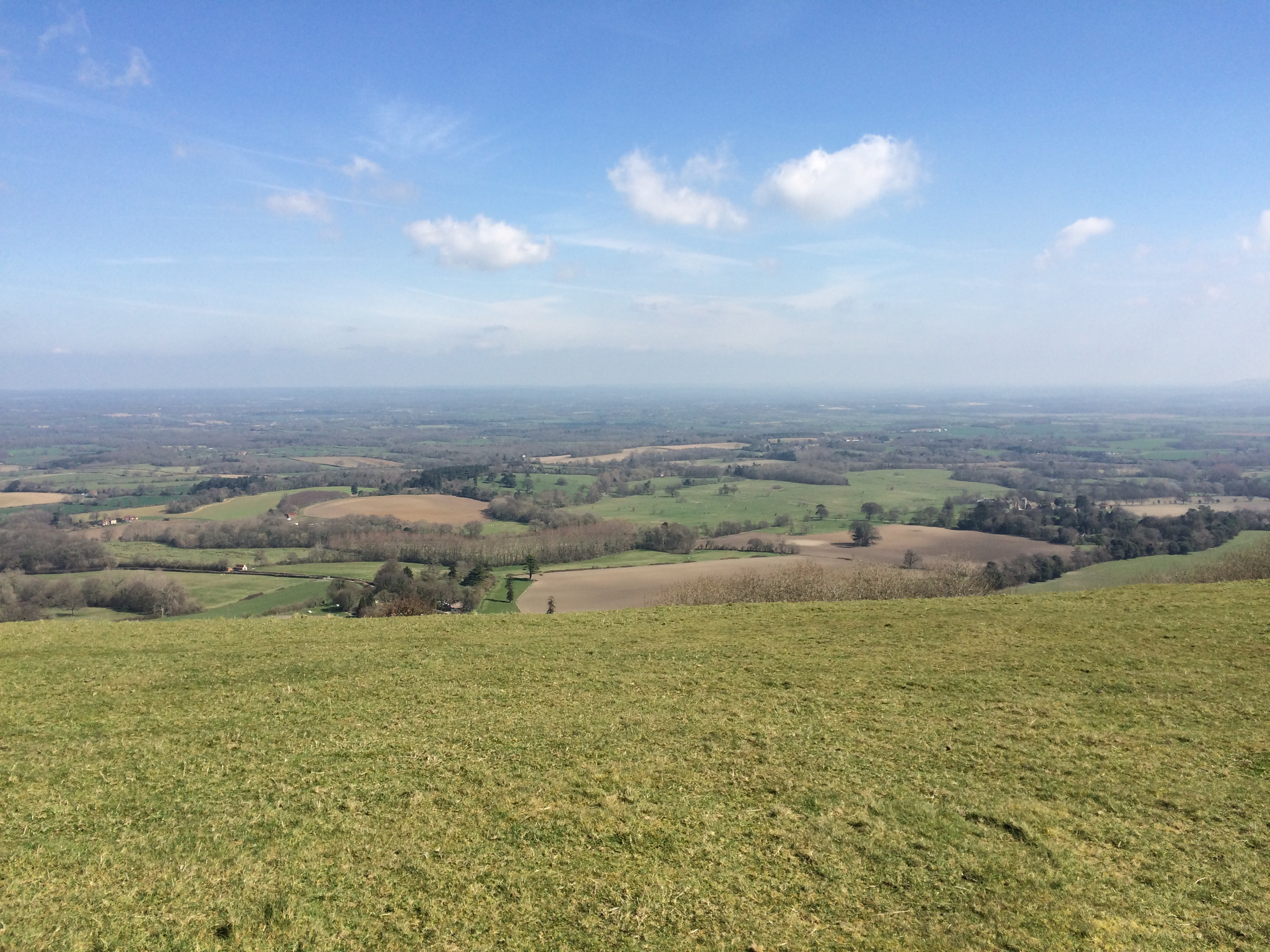 View Facing North From Chanctonbury Ring