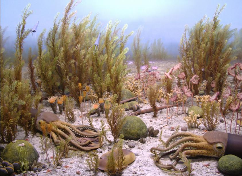 Ordovician - Ordovician Period seas