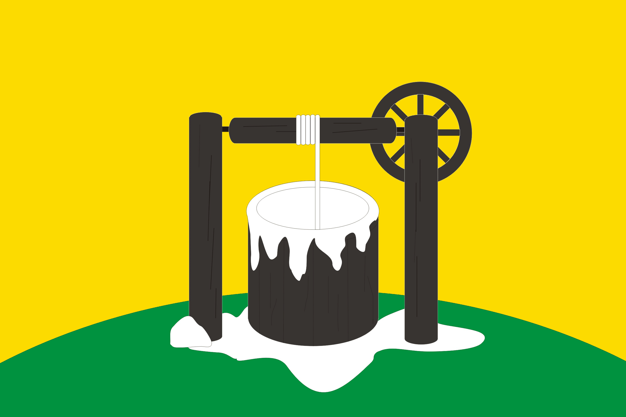 Flag of Solikamsk Perm