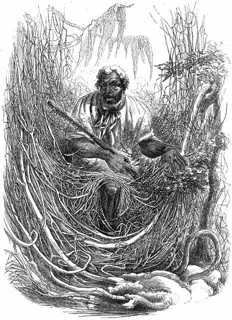The Great Dismal Swamp - Osman, a Great Dismal Swamp Maroon, by David Hunter Strother, 1856
