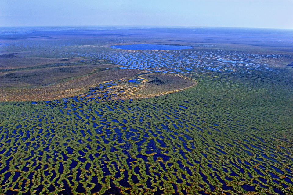 Vasyugan Mire - Biggest Swamp Russia - From The Air 7