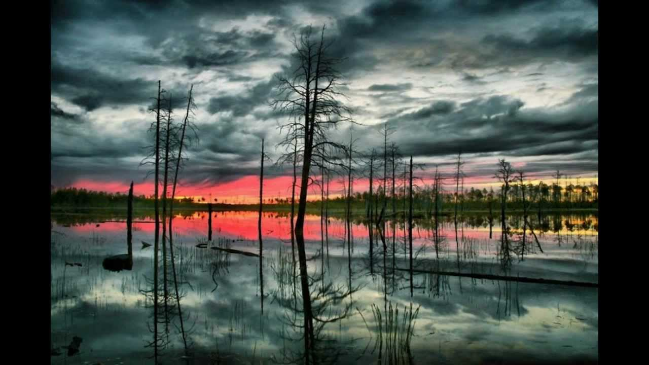 Vasyugan Mire - Biggest Swamp Russia - Sunset