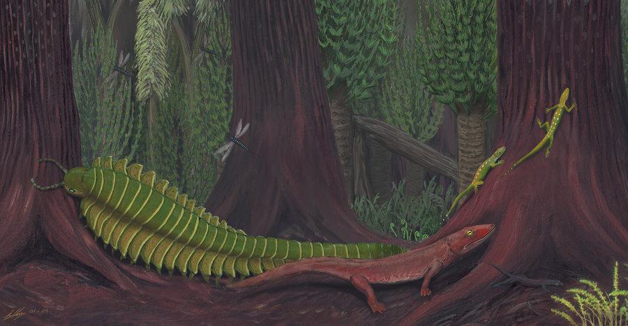 Carboniferous Life 2