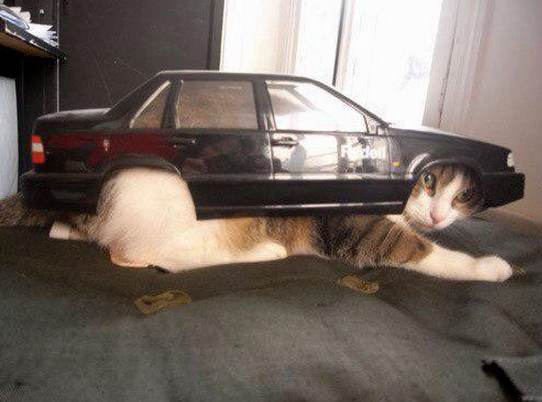 Funny Russian Pictures - Kit Car Russian Style