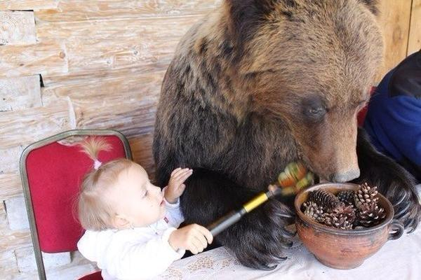 Awesome Photos From Russia With Love - Baby And Bear