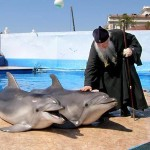 Awesome Photos From Russia With Love - Religion And Dolphins