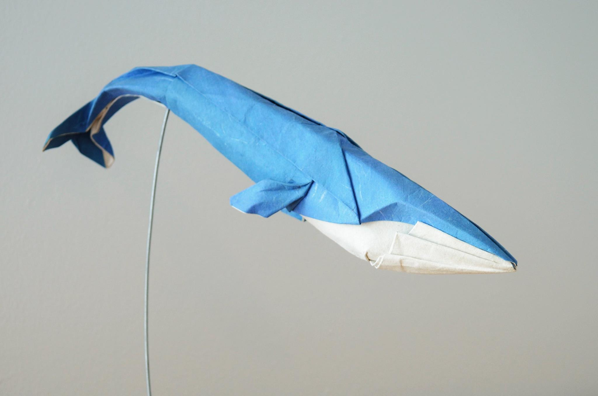 Hoang Tien Quyet Wet Fold Origami Blue Whale