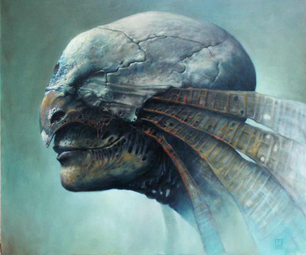 Dariusz Zawadzki - Feather Head