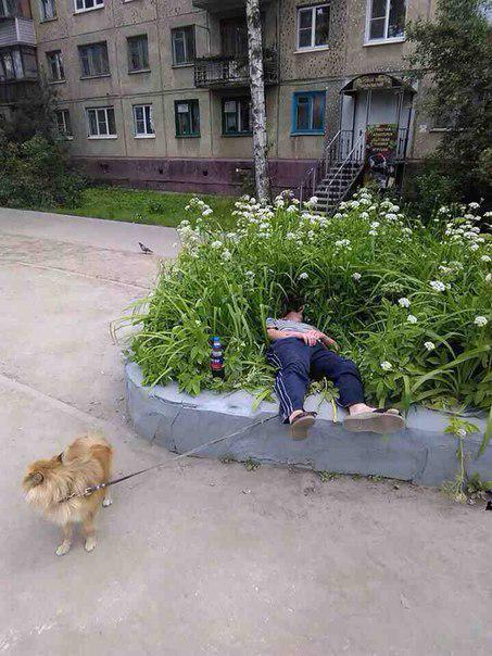 Awesome Photos From Russia With Love - Sleepy Time