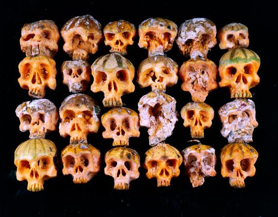Dimitri Tsykalov - Fruit Skull Rotting