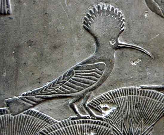 Hoopoe - Upupa Epops - Bas Relief - Ancient Egypt