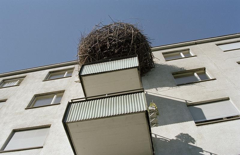 Hilarious Balconies - Stork Nest