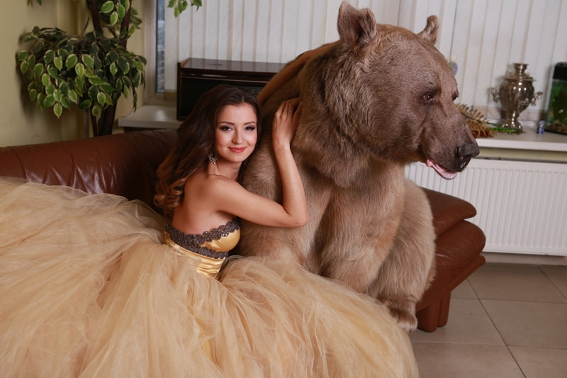 Awesome Photos Russia - Bear and woman wedding