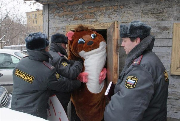 Awesome Russia - Squirrel Arrest