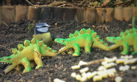 Real Birds Vs Toy Dinosaurs - Tits And Stegs