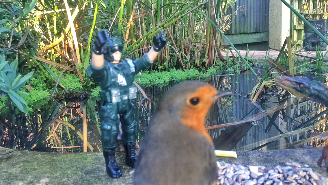 robin-military-man-and-raptor-2