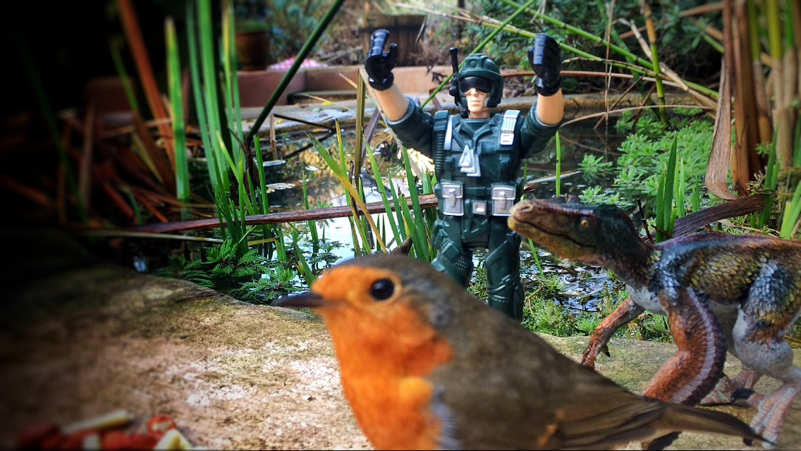 robin-military-man-and-raptor