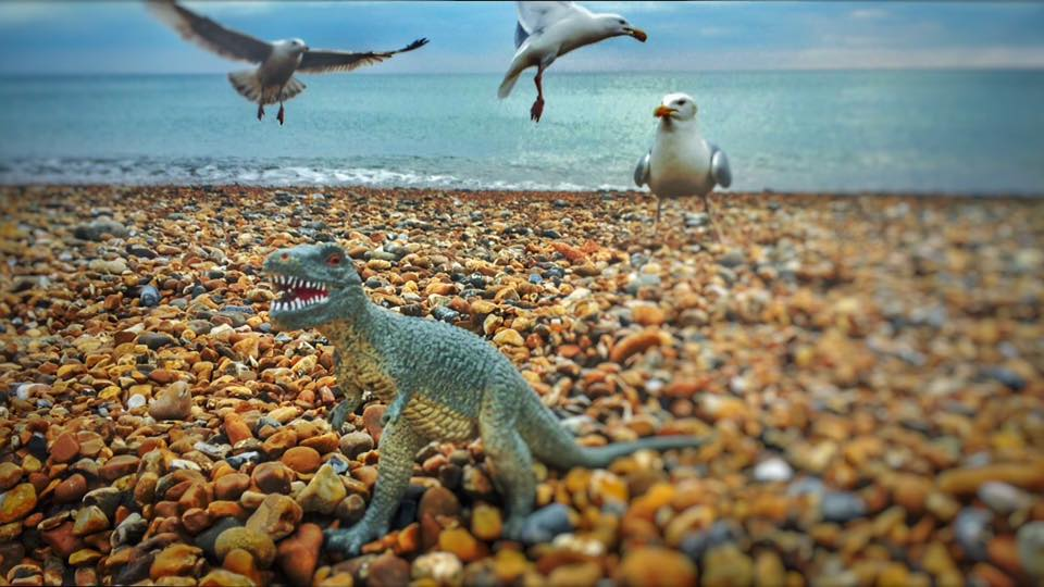 T Rex And Seagulls