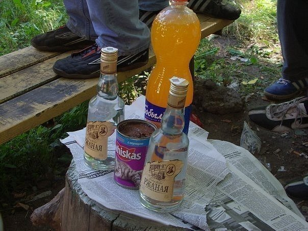 Awesome Photos From Russia - Russian Picnic