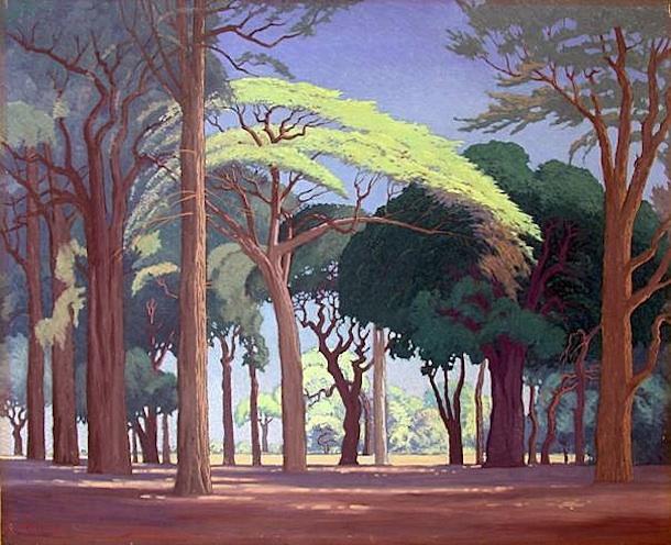 Jacobus Hendrik Pierneef - Woods