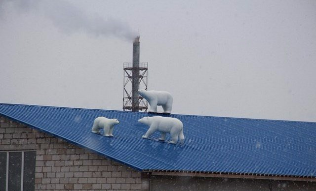 Awesome Russia - Polar Bears On Roof