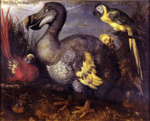 Old Paintings of Birds - Roelant Savery, 1626