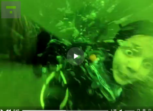 Woman Diver In Trouble Video