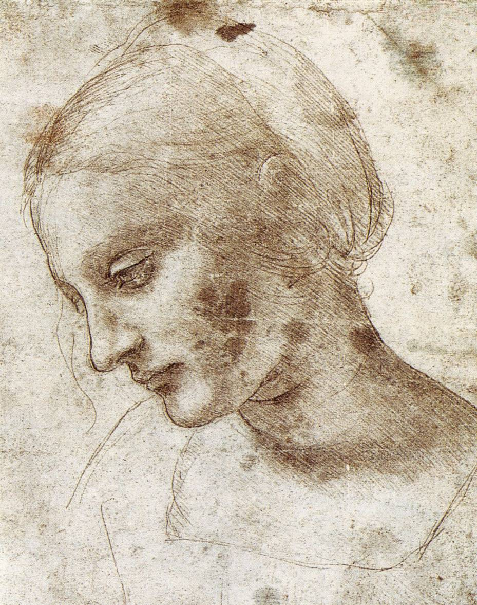 leonardo-da-vinci-sketches-study-of-woman