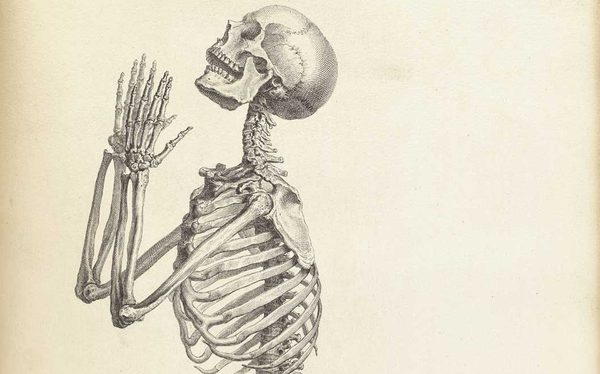 old-anatomy-drawings-praying-skeleton