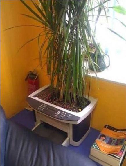 russian-humour-plant-printer