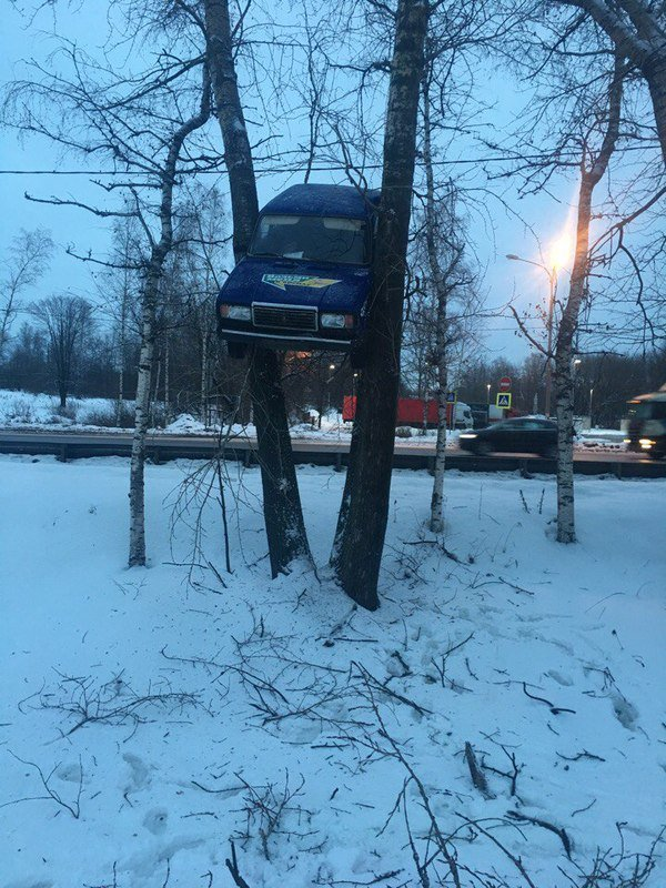 awesome-russia-car-in-a-tree