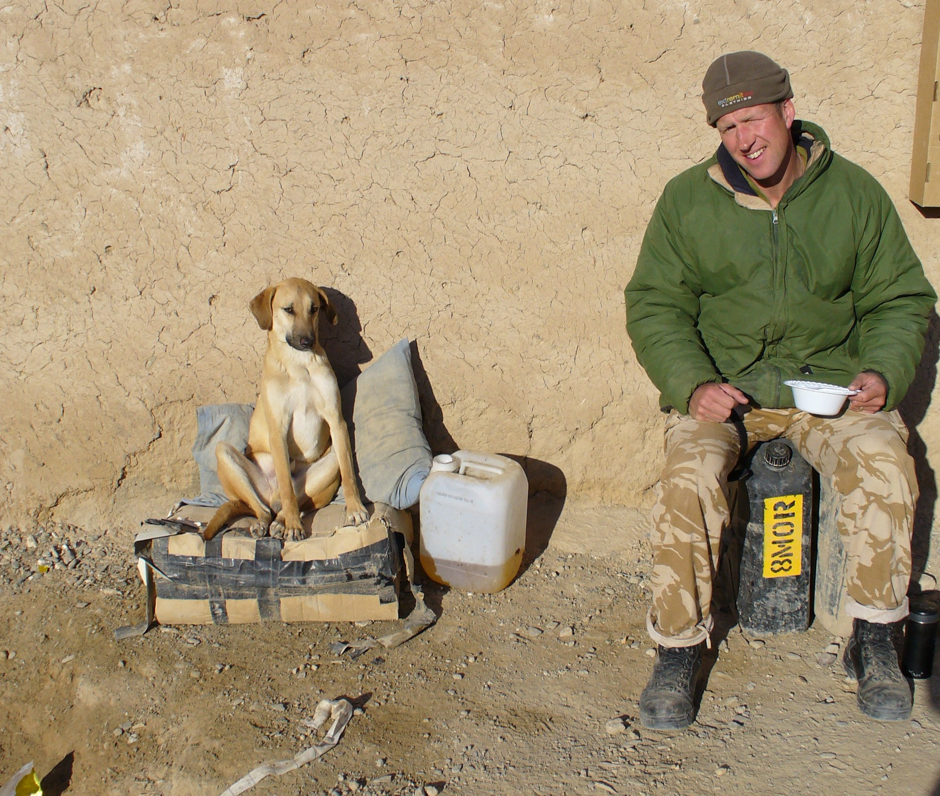 Nowzad Dogs - Saving The Animals Of Afghanistan • Lazer Horse