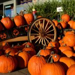 Interesting Facts About the History Of Halloween